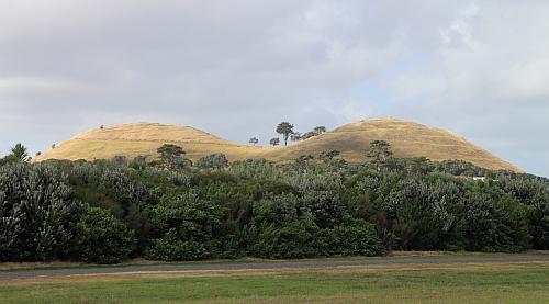 Auckland_busenberg