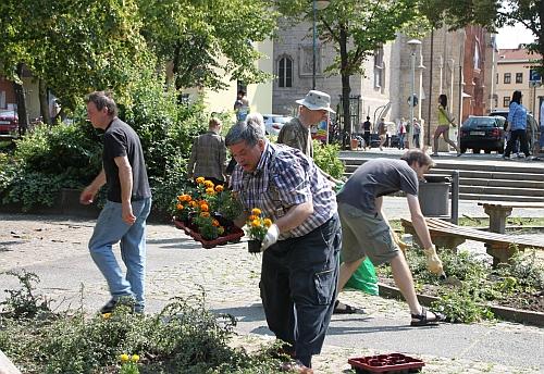 Guerilla Gardening - obwohl der Ideengeber der Aktion so gar nicht wie ein Guerillero daherkommt. Hütet euch vor harmlosen Leuten.