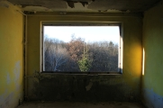 the bedroom window - the trees are coming closer and have a look inside