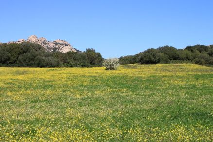 Schöne Landschaft.