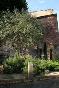 Cahors liegt auf einem der Jakobswege - einem recht trockenen, was die Pflanzen im Pilgergarten widerspiegeln.