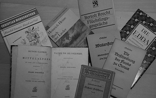 Leidkultur_Literatur